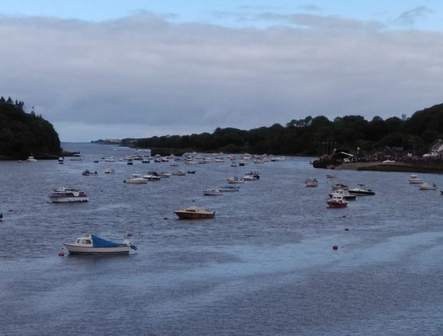A view of the Moy Estuary.