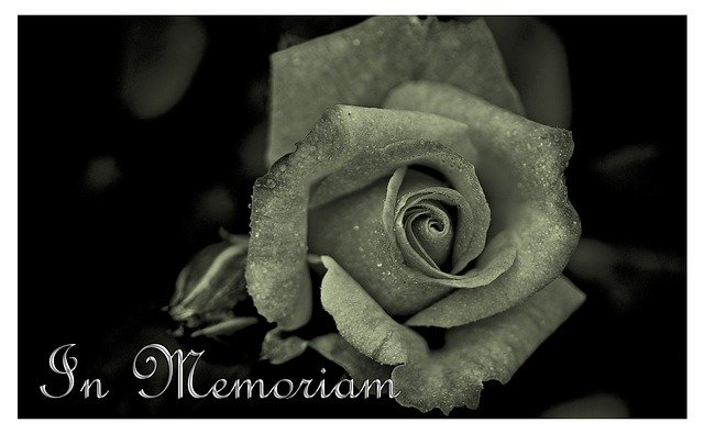 rose with words In Memoriam